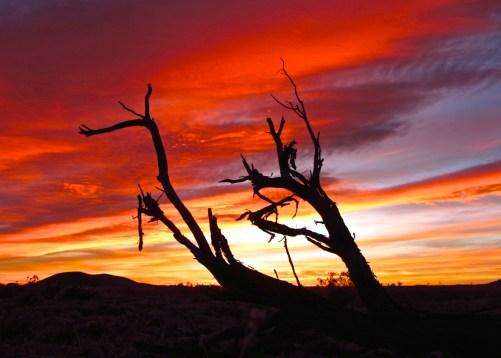 Sunset on the Arizona Trail | 2012