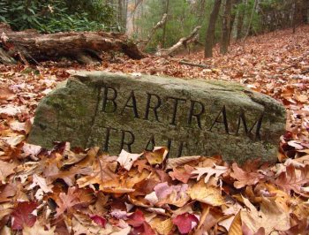 Bartram : Southeastern Serpentine Trail | Georgia