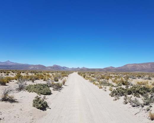 Day 2 - The little used dirt road leading to Salinas de Garcia. I didn't see a single vehicle during my hourse