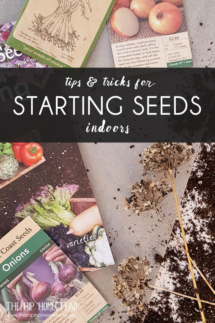 Tips and Tricks For Starting Seeds Indoors The Hip Homestead