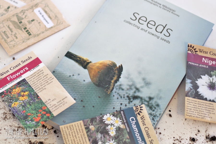 Tips and Tricks for Starting Seeds The Hip Homestead