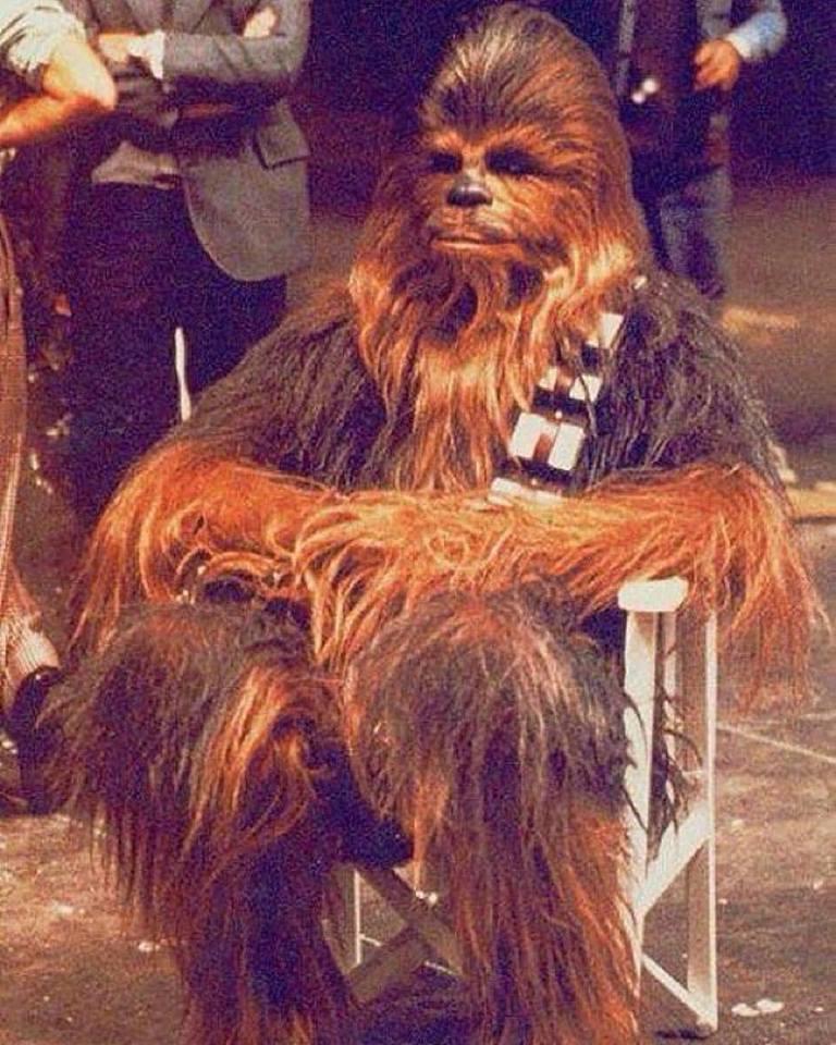 Chewbacca takes a break, 1976