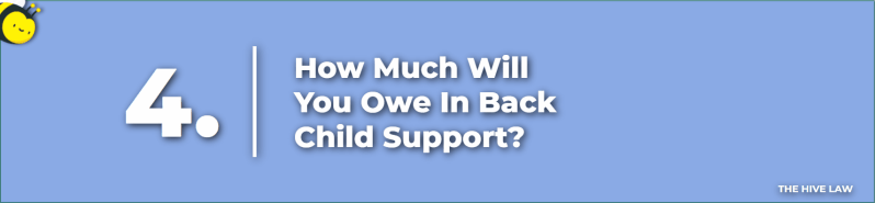 Back Child Support Georgia - does child support have to be court ordered - georgia laws on child support - child support georgia laws