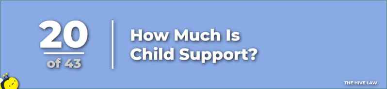How Much Is Child Support - What Does Child Support Cover - questions to ask divorce attorneys