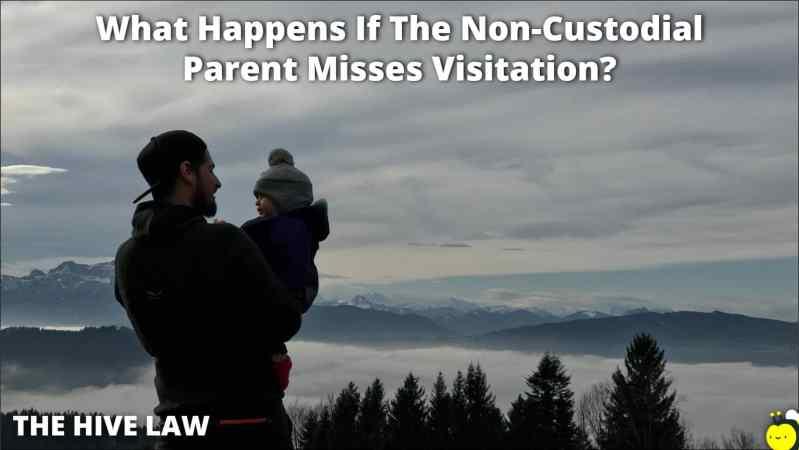 What Happens If The Non-Custodial Parent Misses Visitation - Non-Custodial Parent Not Exercising Visitation Rights