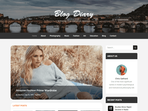 blog diary Best Free Themes For WordPress