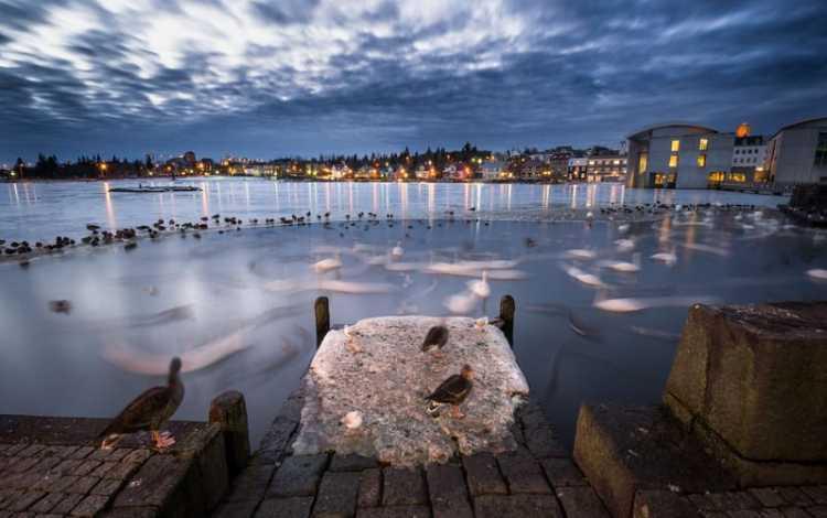 Christmas in reykjavik iceland
