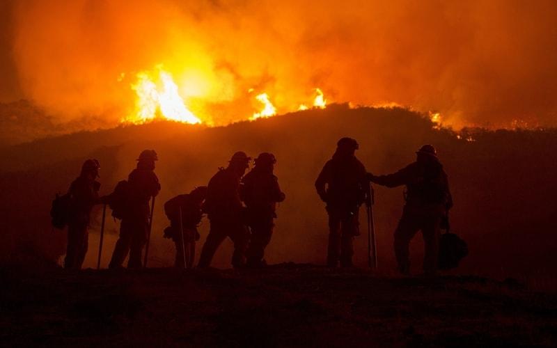thp-bushfires-in-australia-cover-4