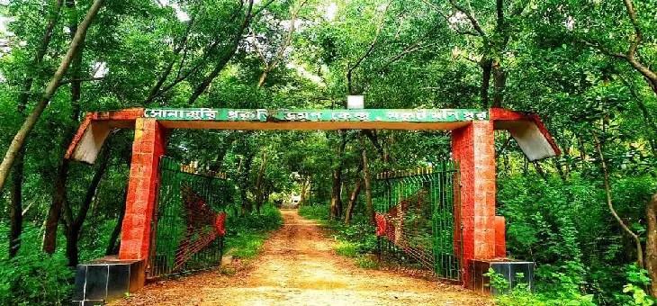 sonajhuri mukutmanipur
