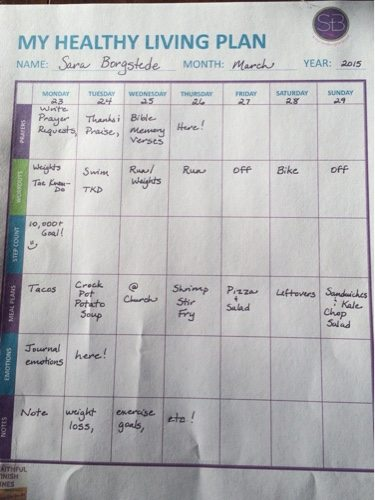 My Healthy Living Plan example