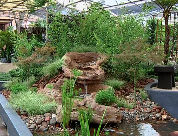 Water Garden – MIZU TO KOPISHI Gardening The Home Channel