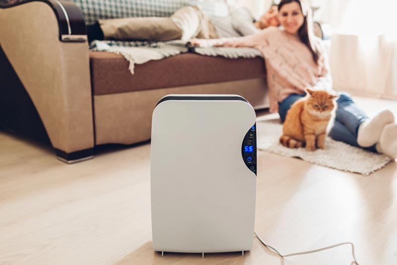 The-Benefits-of-Having-a-Dehumidifier