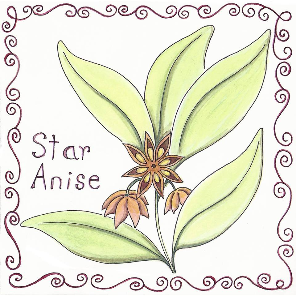 The Spice Series: Star Anise