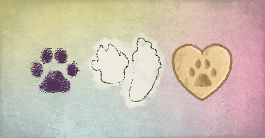 diy paw print projects