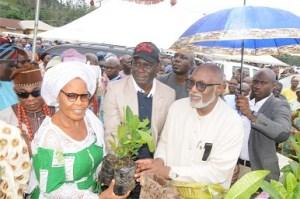 Our cocoa rebirth initiative 'll restore Nigeria's fortune – ODSG