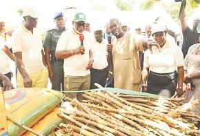 Revolutionising Agriculture in Ondo