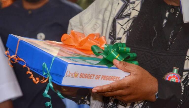 2019 budget 'll improve economy – Expert