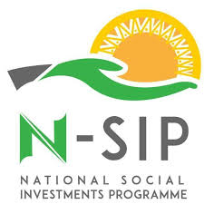 SIP beneficiaries pledge support for Buhari's re-election