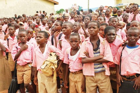 Curriculum drafting:  Educationist seeks appointment of experts