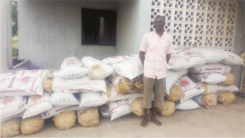 Ondo NDLEA arrests man with 624kgs cannabis