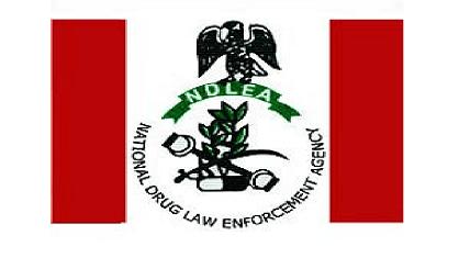 Drug abuse, threat to future leaders- NDLEA boss