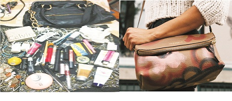 What is in a lady's bag?