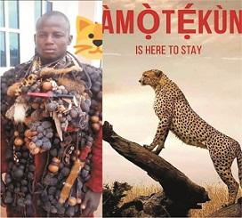 'Curb traditional corruption, ritual killings through Amotekun'