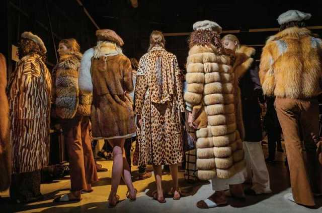 Fur is in Fashion and the situation for animals grim