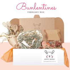 February Bunlentines Box