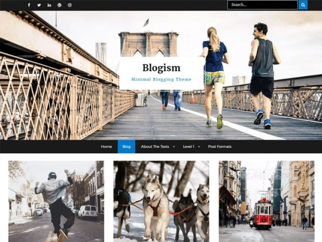 best blog wordpress themes free