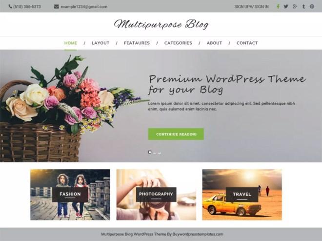 best professional blog wordpress themes