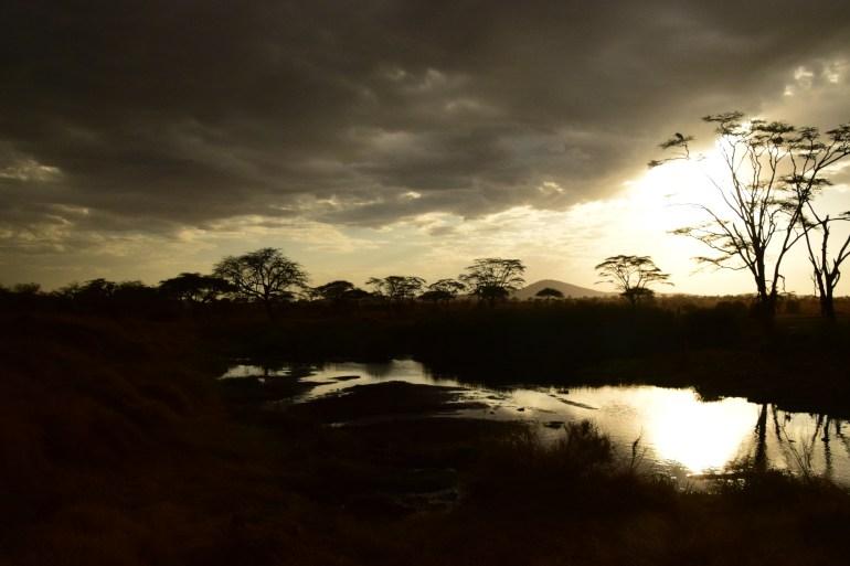 sunset across a pond in the serengeti plains tanzani