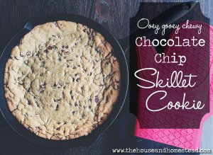 Ooey, gooey, chewy chocolate chip skillet cookie