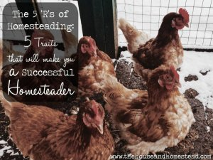 The 5 'R's of Homesteading: 5 Traits of a Successful Homesteader