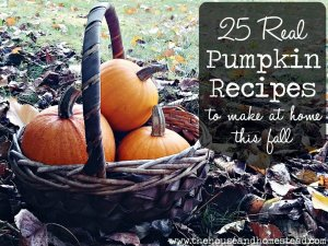 25 Real Pumpkin Recipes to Make At Home This Fall