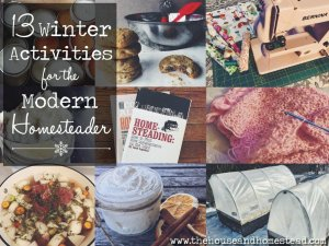13 Winter Activities for the Modern Homesteader