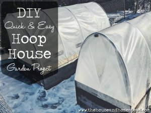 How to Build a Quick and Easy DIY Hoop House
