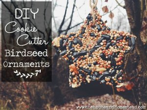DIY Cookie Cutter Birdseed Ornaments