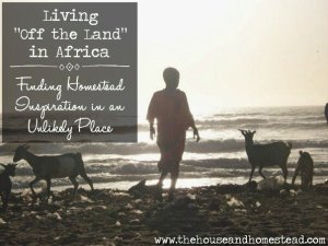 "Living ""Off the Land"" in Africa: Finding Homestead Inspiration in an Unlikely Place"