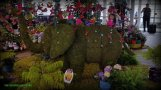 Elephant topiary-my daughter loves elephants
