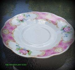 Beautiful saucer