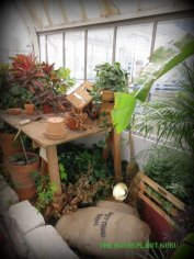 The old potting bench