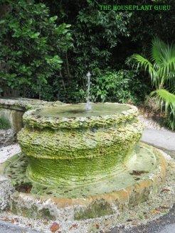 The bottom fountain