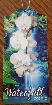The tag from the orchid