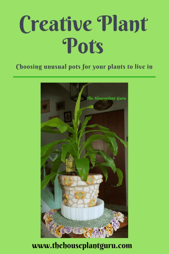 Creative Plant Pots with Urban Jungle Bloggers