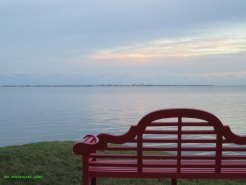 The veiw of Biscayne Bay from The Kampong