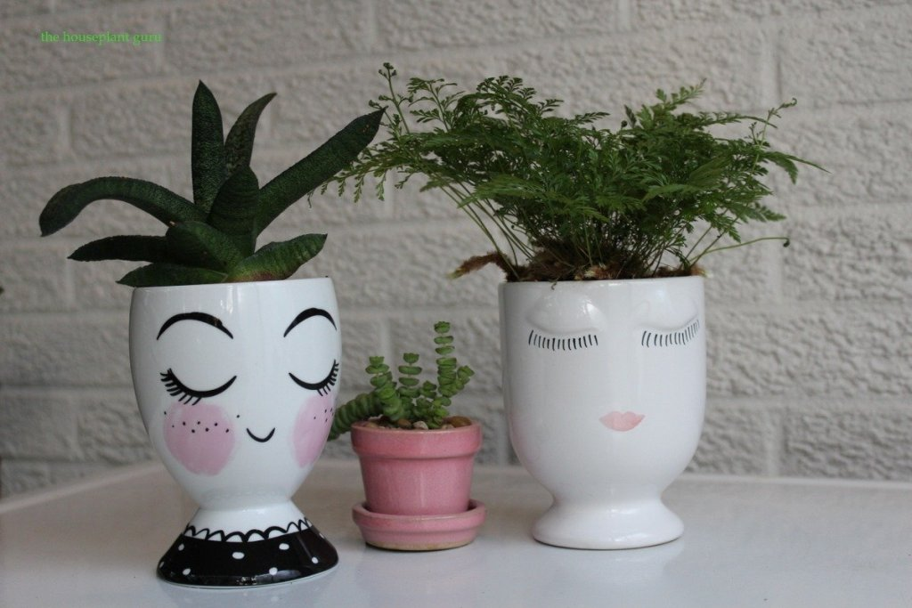 The two modern head vases