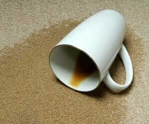 How to Remove Coffee Stains from Carpet [Ultimate GUIDE Of 2019] - The House Wire