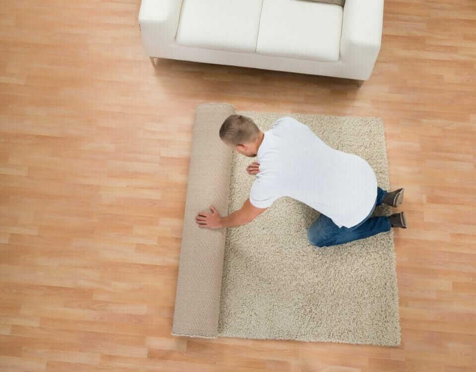 right choice between carpet-vs-hardwood