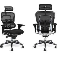 Inexpensive Ergonomic Chair Slipcovered Living Room Chairs Dress Your Ergohuman For Success New Fabric Options Human Solution In The World Of Affordable Raynor Has Been A Popular One Years They Come With Lot Standard